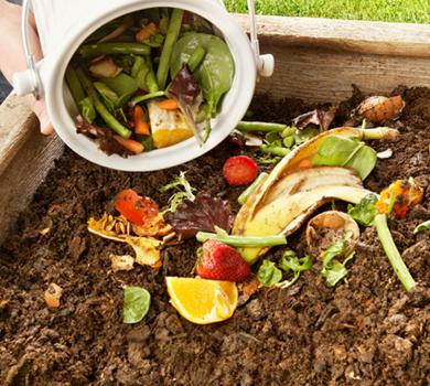 Aprende en Línea como hacer compostaje