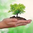 Gestión Ambiental en Quilpué